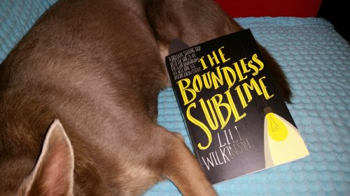 The Boundless Sublime